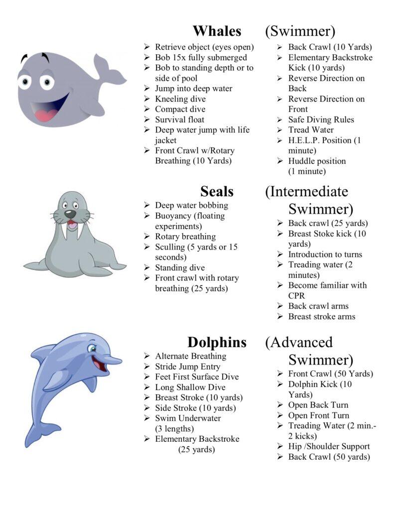 swim level poster 3